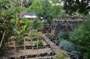 2. Urban Greening (4)