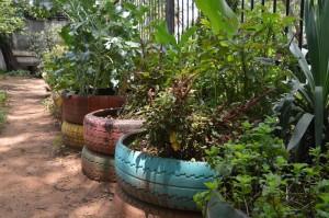 2. Urban Greening (5)